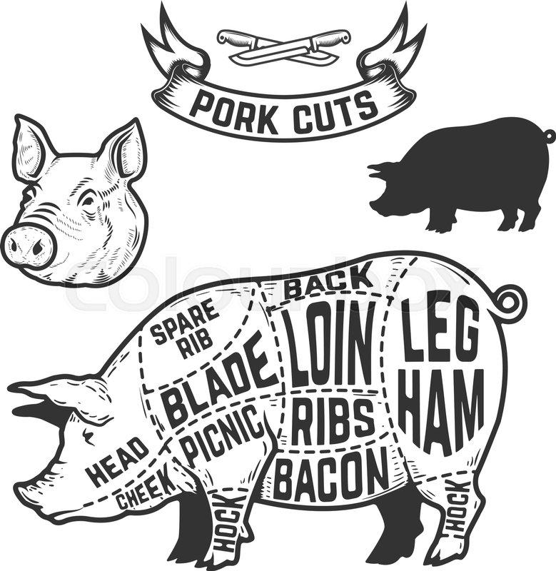 pork cuts butcher diagram  design