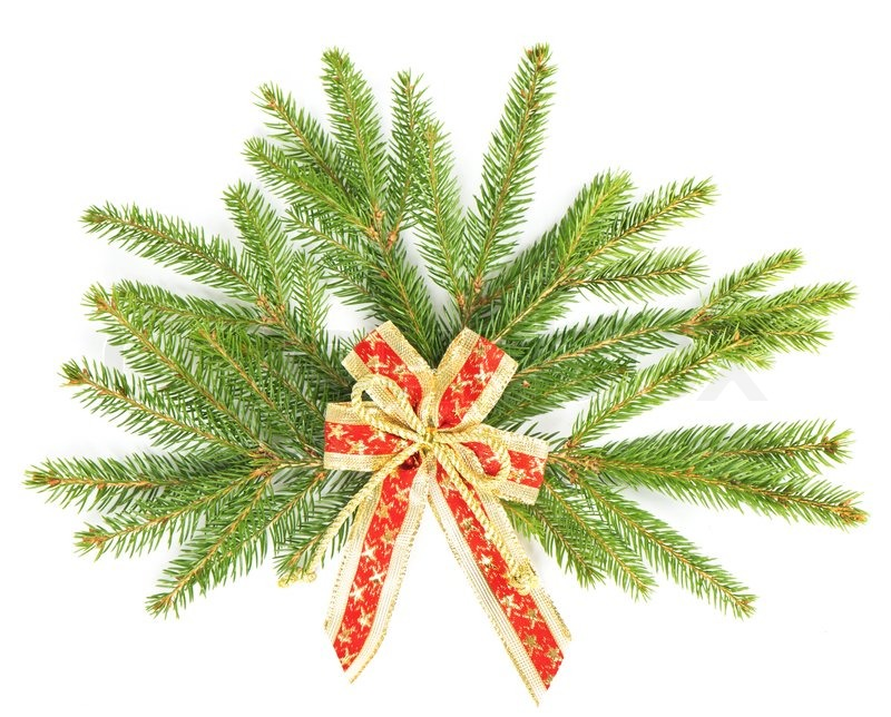 Branch Of Christmas Tree With Red Ribbon Christmas And