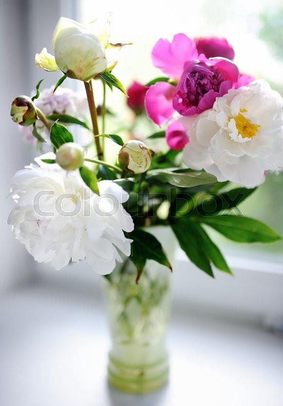 Amazing bouquet of white and purple peonies beautiful flowers on amazing bouquet of white and purple peonies beautiful flowers on window sill at home stock photo mightylinksfo