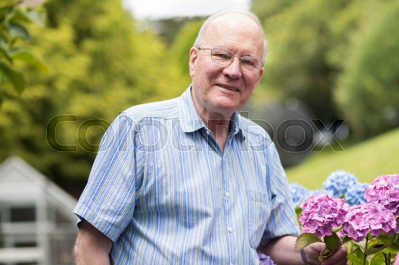 Portrait Of Senior Man Enjoying Garden At Home, stock photo