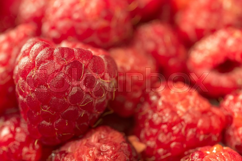 Stock image of 'Picture of a Ripe sweet raspberry. Macro.'