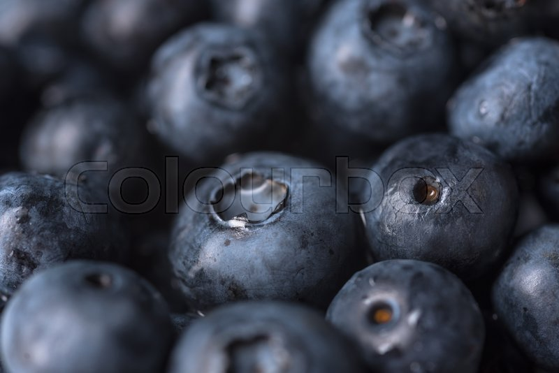 Stock image of 'Closeup image of fresh ripe perfect blueberries. Macro.'