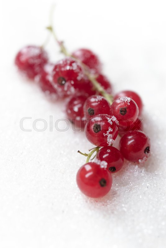 Stock image of 'Photo of sweet currant isolated over white sugar background.'
