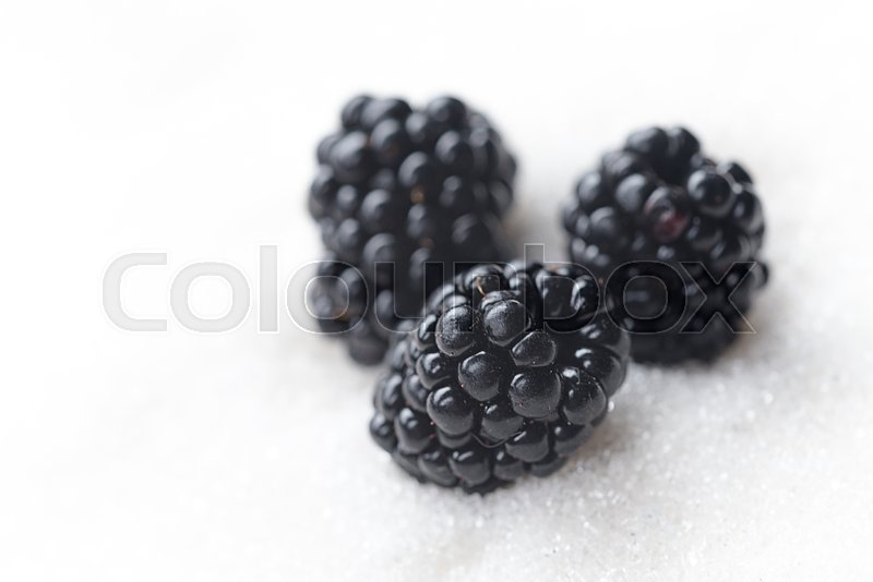Stock image of 'Image of sweet blackberry isolated over white sugar background.'