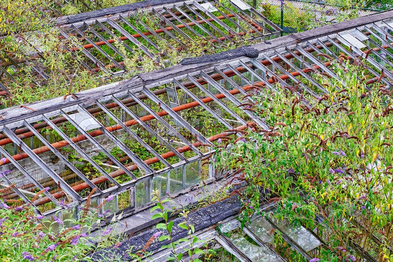 Stock image of 'Abandoned greenhouses with lot of lush foliage, view from above'