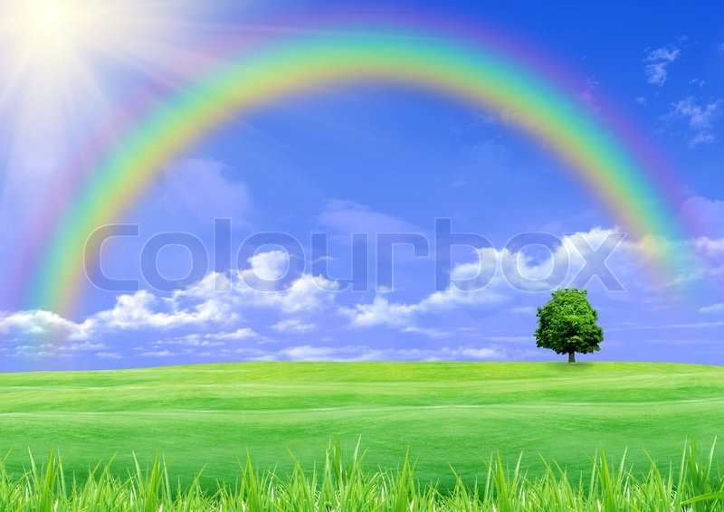 Real Rainbows In The Sky On A Sunny Day | www.pixshark.com ...