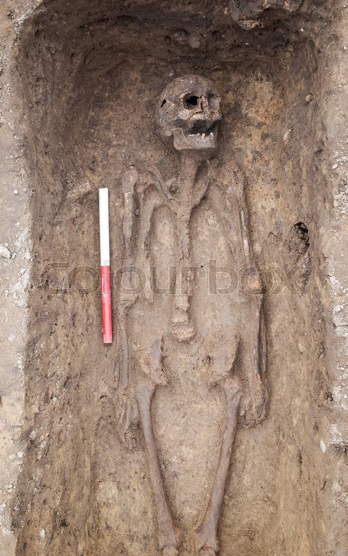 Stock image of 'Archaeological excavation with skeletons and skulls still half buried in the ground'