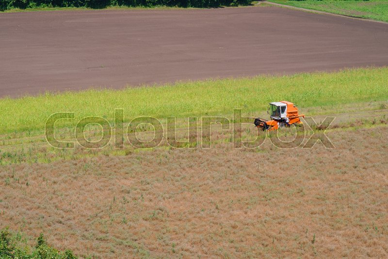 Stock image of 'Harvester on the field cleaning the view from the air'
