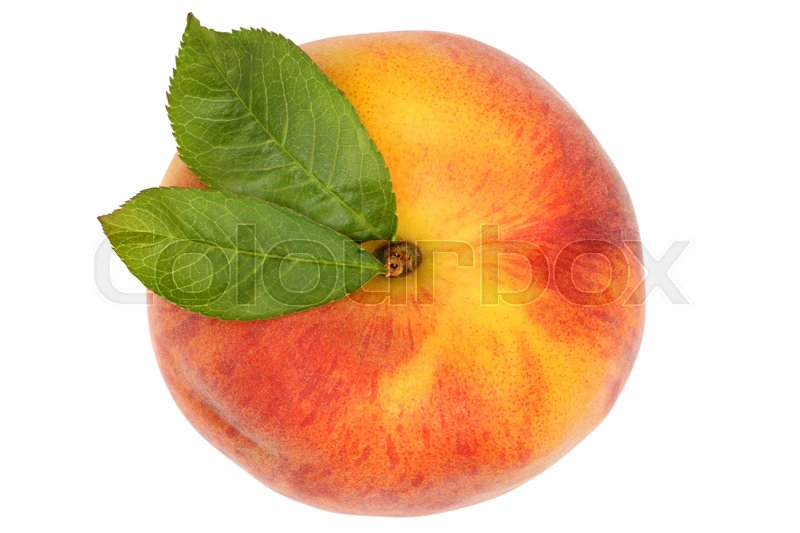 Stock image of 'Peach fruit top view from above isolated on a white background'