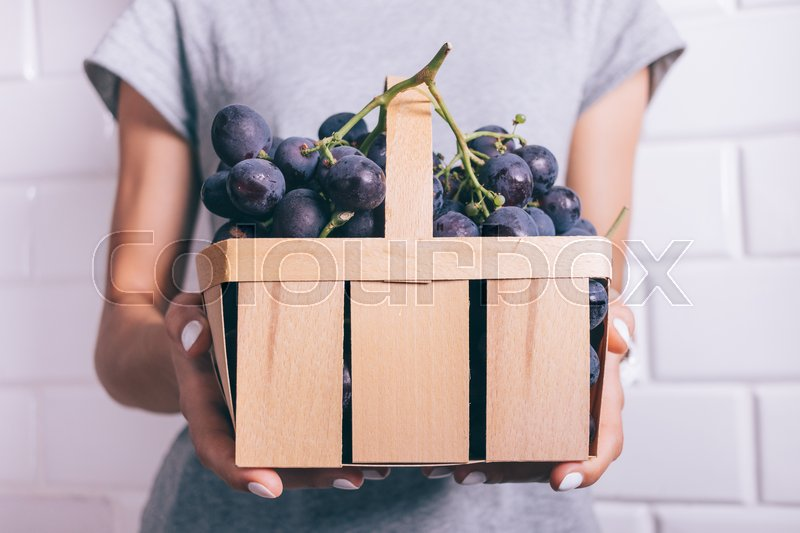 Stock image of 'Basket with large blue grapes in female hands with manicure on white background, close-up'
