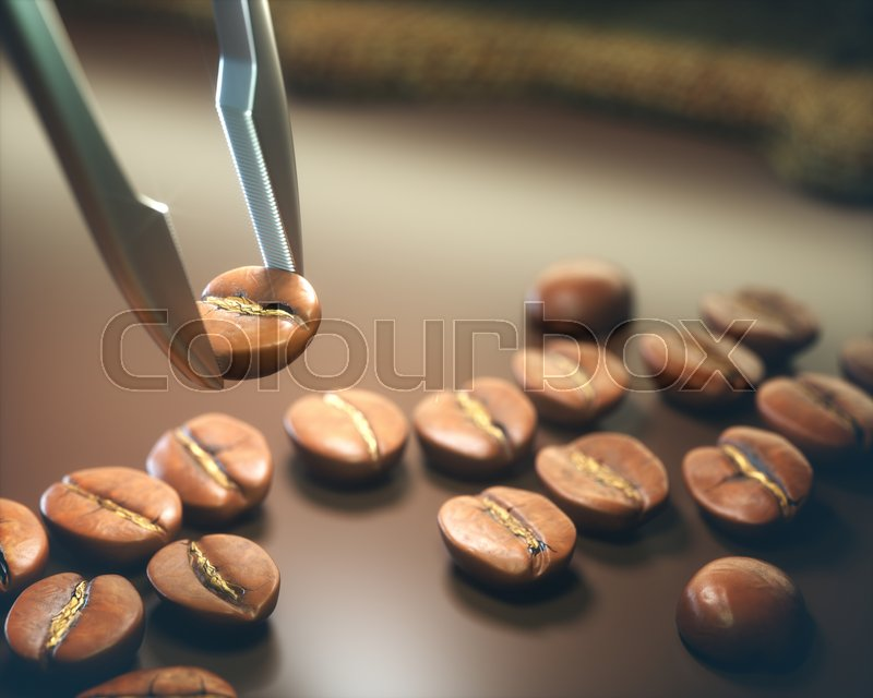 Stock image of 'The best roasted coffee bean chosen by tweezers.'