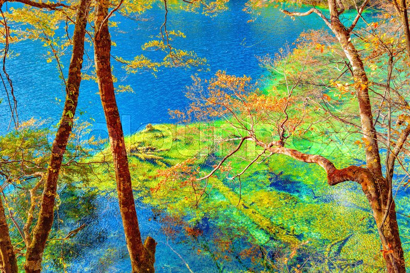 Stock image of 'Autumn trees by the lake. Jiuzhaigou nature reserve, Jiuzhai Valley National Park, China.'