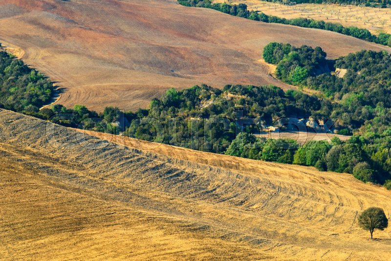 Stock image of 'Aerial view of a tuscan landscape in summer'