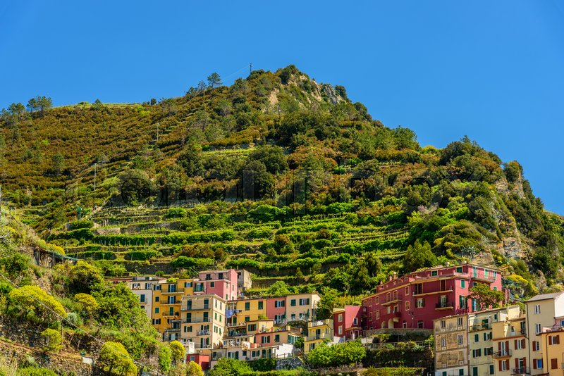 Stock image of 'MANAROLA, ITALY - APRIL 29, 2017 - View of some colorful houses in the famous town of Manarola inside the Cinque Terre National Park.'