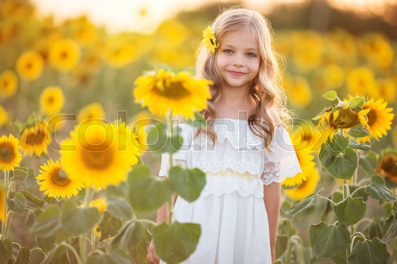 Stock image of 'Pretty child girl is wearing white dress in yellow garden of sunflowers'