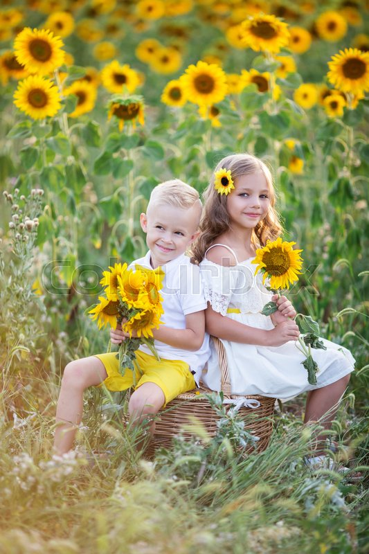 Stock image of 'Happy couple of kids boy and girl are wearing white clothes with basket in yellow garden of sunflowers'