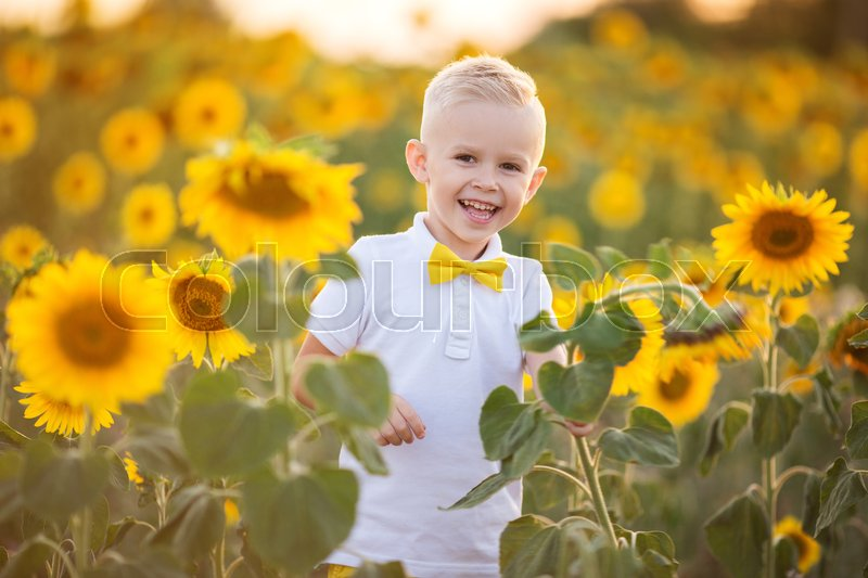 Stock image of 'Pretty smiling child boy is wearing white shirt in yellow garden of sunflowers'