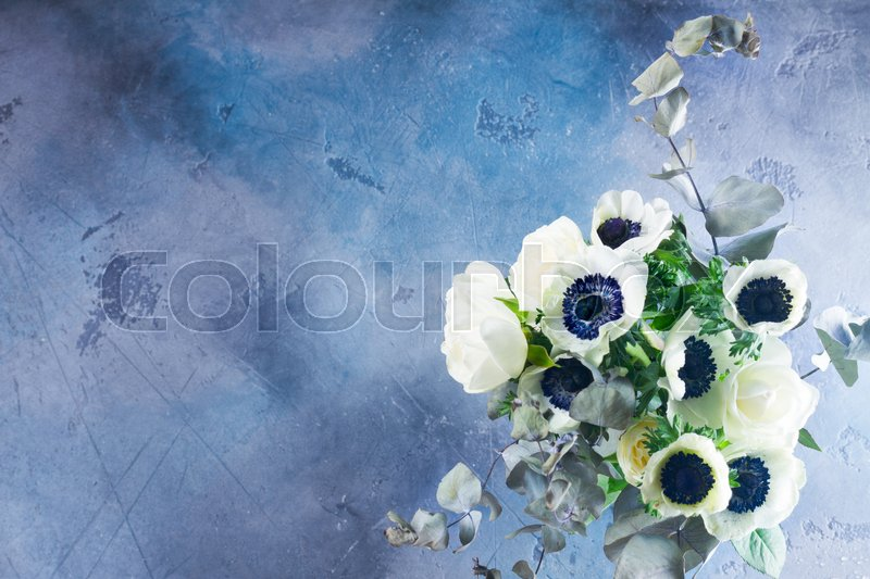 Stock image of 'Fresh colorful Anemones fresh flowers on gray and blue stone background with copy space'