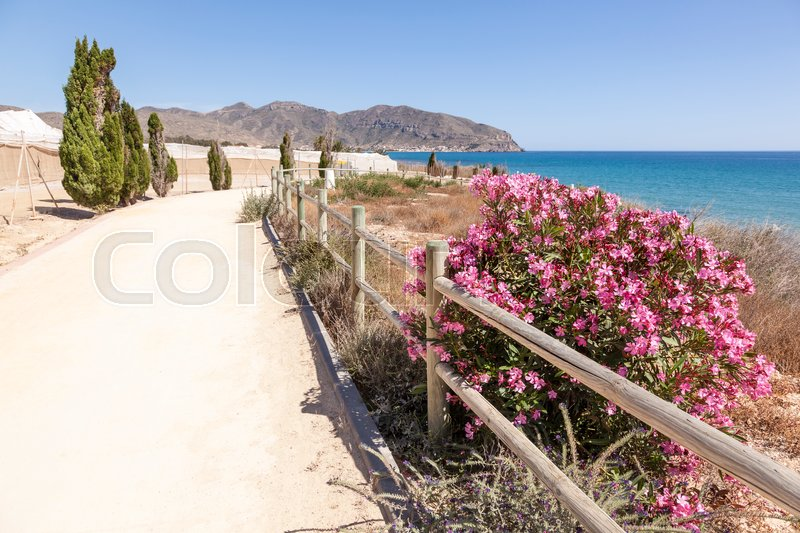 Stock image of 'Hiking trail at the mediterranean coast between the towns Isla Plana and La Azohia. Province of Murcia, Spain'