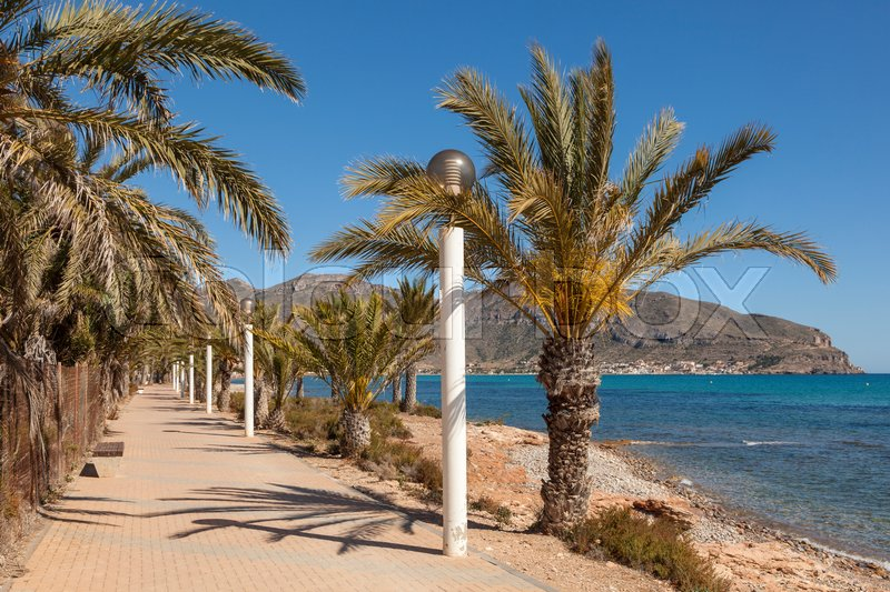 Stock image of 'Palm trees on the promenade in La Azohia. Province of Murcia, Spain'