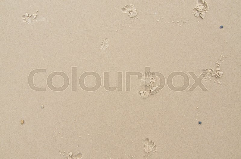 Stock image of 'footprints from a baby walking in the wet sand on a beach on a summer day. Vibrance added.'