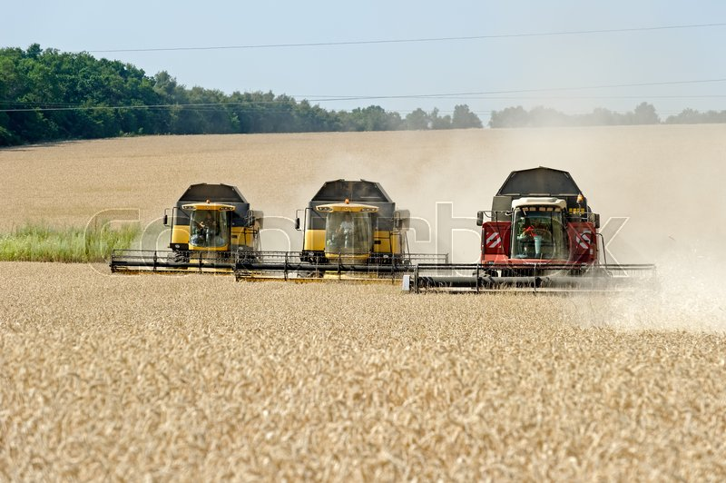 Editorial image of 'Kharkiv Region, Ukraine - July 25, 2017: Combine harvest wheat on a field in sunny summer day in Kharkiv Region, Ukraine on July 25, 2017.'