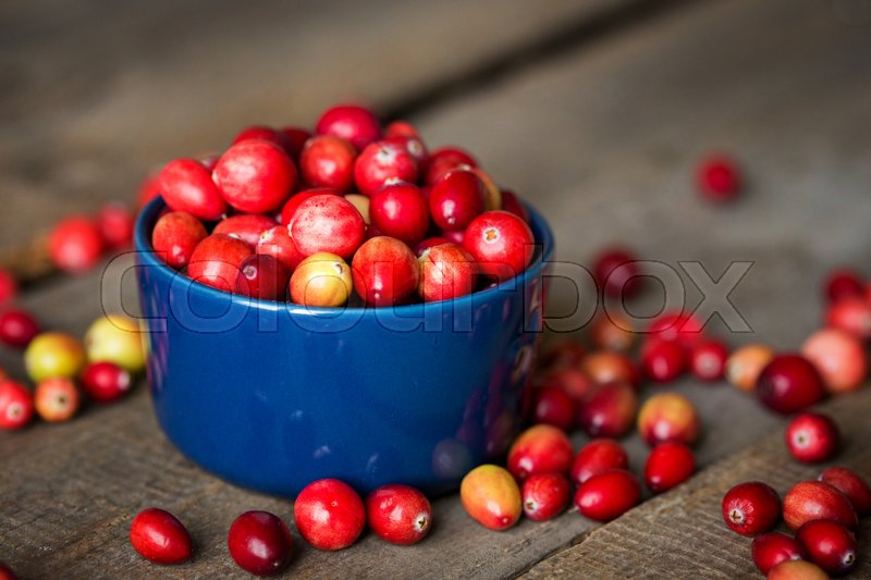 Stock image of 'Bright red cranberries in a beautiful blue bowl on a wooden table, close-up '