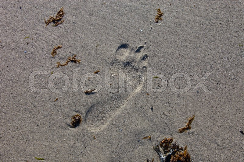 Stock image of 'Footprint in the sand'