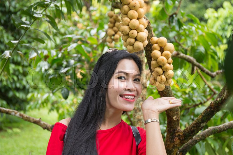 Stock image of 'Asian woman with wollongong tree in the garden'