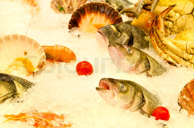 Stock image of 'a lot of different seafood on ice'