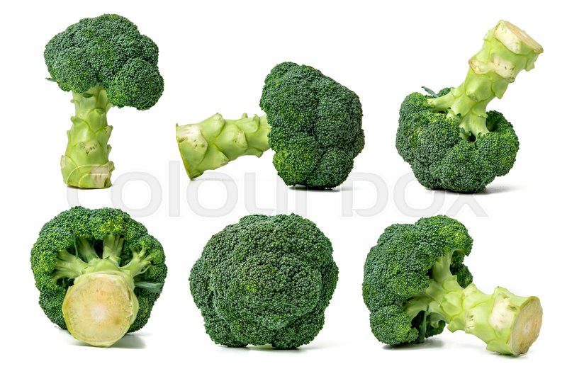 Stock image of 'collection of broccoli cabbage isolated on white background'