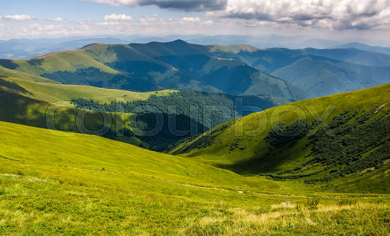 Stock image of 'beautiful summer landscape. green grassy meadow on a hillside on top of mountain ridge under cloudy blue sky'