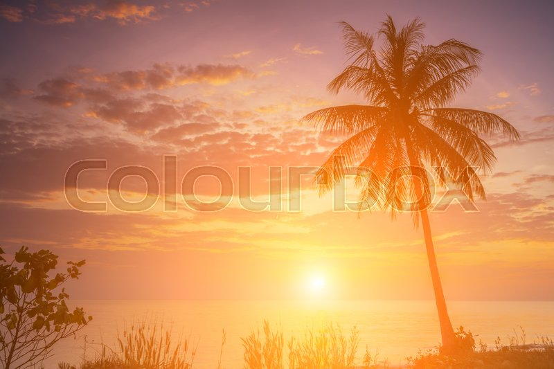 Stock image of 'Romantic sunset over the beach. Koh Chang. Thailand.'