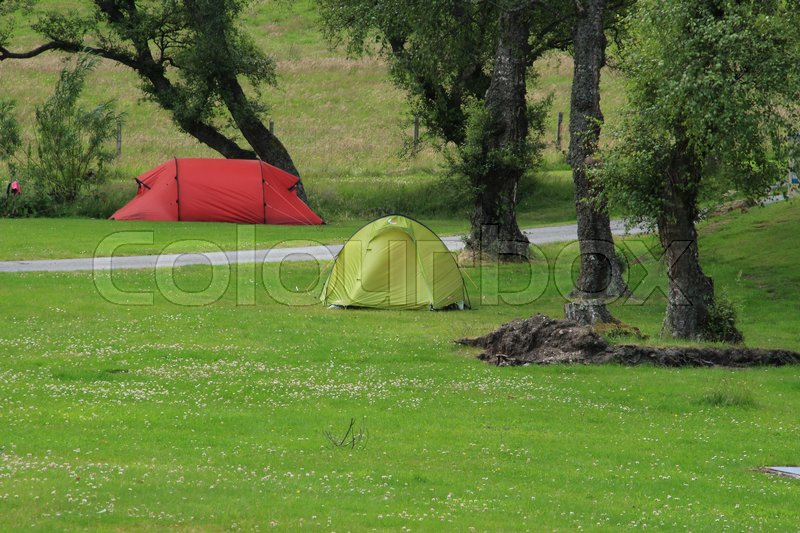 Stock image of 'A red and a green tent between the trees at the camping site at the village Braemar in Scotland in the summer.'