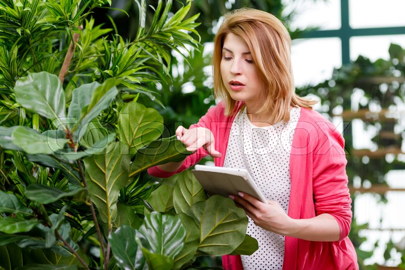 Stock image of 'Florist with tablet near house plants in store'