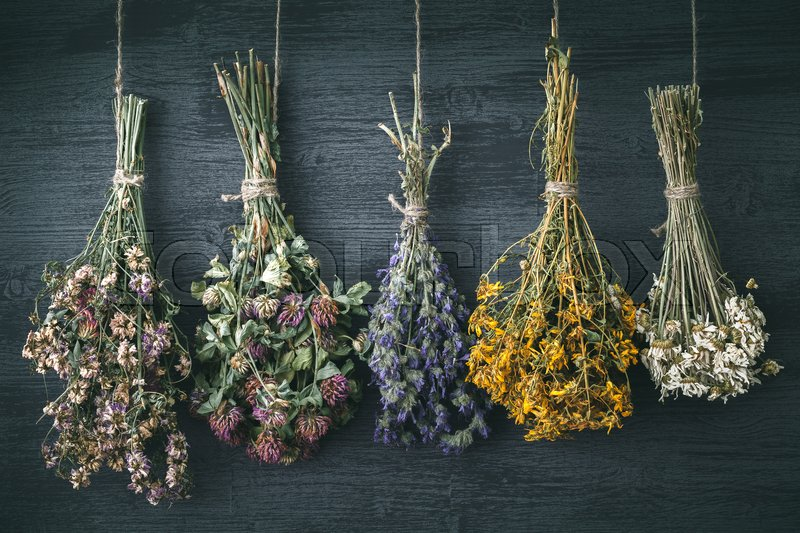 Hanging bunches of medicinal herbs and flowers. Herbal medicine. Retro toned photo, stock photo