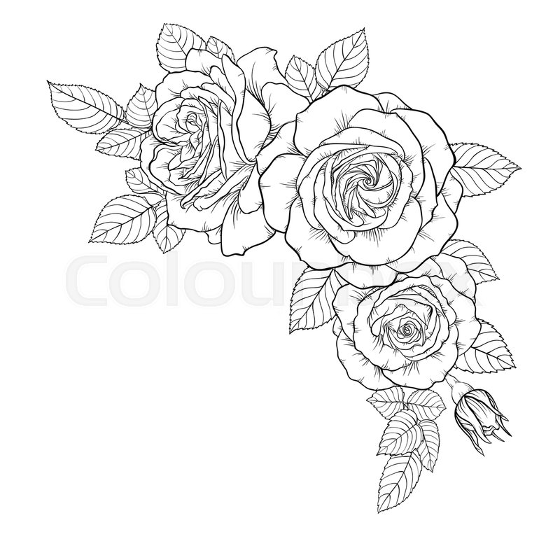 Beautiful Black And White Bouquet Rose Leaves Floral Arrangement Isolated On Background Design Greeting Card Invitation Of The Wedding Birthday