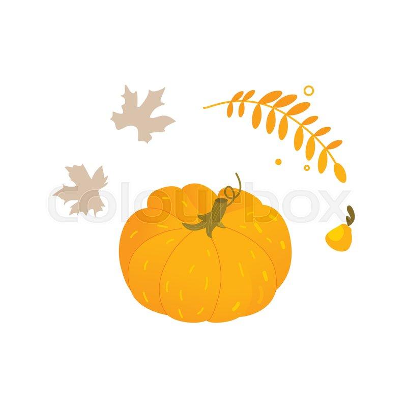Flat cartoon style pumpkin halloween thanksgiving symbol with flat cartoon style pumpkin halloween thanksgiving symbol with leaves and herbs cartoon vector illustration isolated on white background thecheapjerseys Choice Image