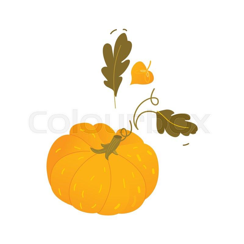 Flat cartoon style pumpkin halloween thanksgiving symbol with flat cartoon style pumpkin halloween thanksgiving symbol with fall autumn leaves cartoon vector illustration isolated on white background thecheapjerseys Choice Image