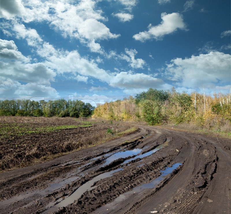 Countryside Landscape With Dirt Road After Rain Russia
