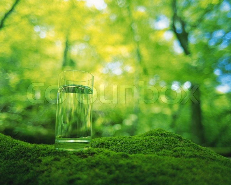 A Glass Of Fresh Water In The Forest Stock Photo Colourbox