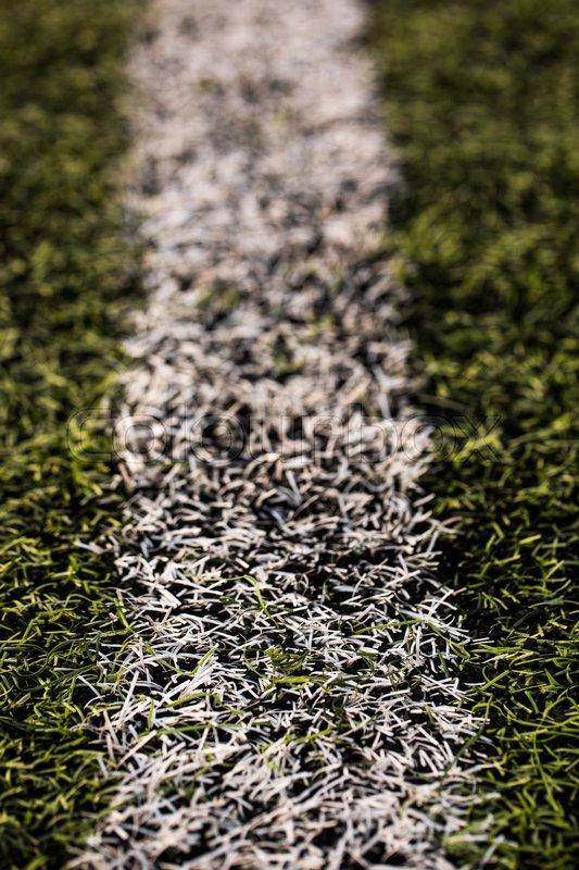 Green grass pattern for football sport, Football field, soccer field, team sport texture. White stripe on it. Close up focus. Macro photo, stock photo