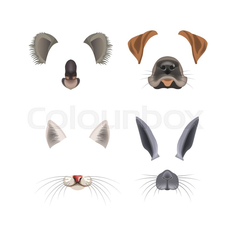 Animal Face Video Chat Animated Effect Filter Templates For Smartphone Camera Application Koala Dog Or Cat And Rabbit Animals Head Ears Cartoon