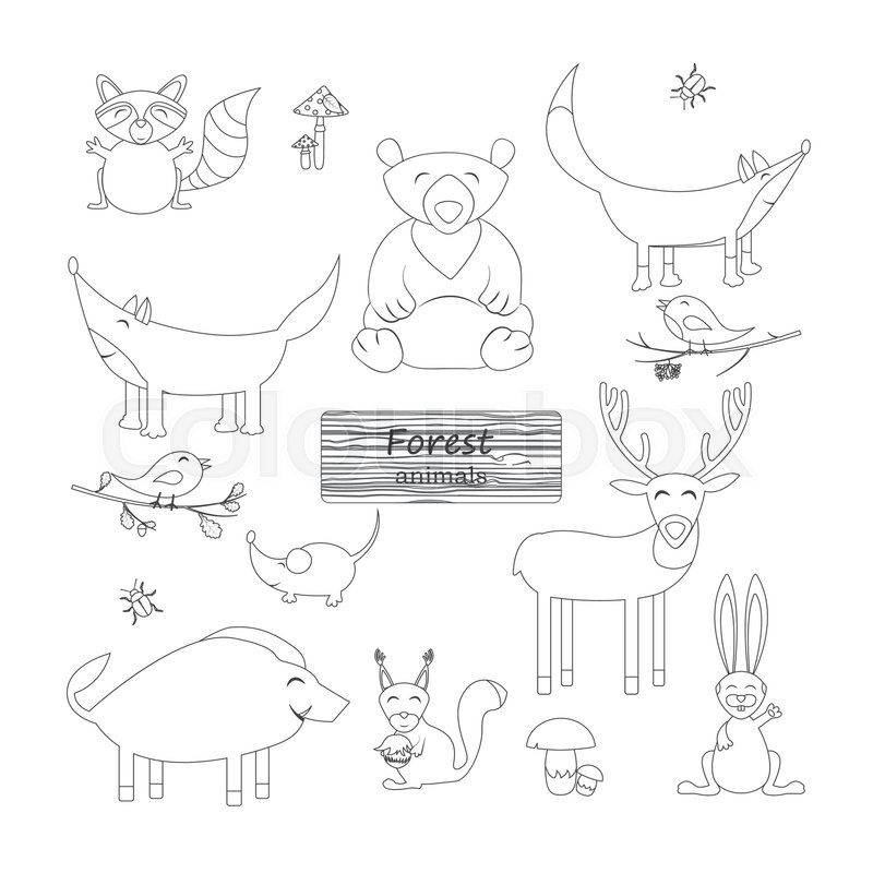 Coloring Book Forest Animals In Cartoon Style On White Background Wildlife Collection Outline Drawing Vector Illustration