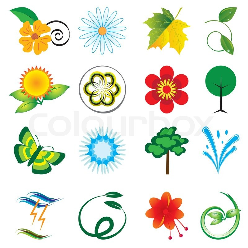 A collection of natural elements for design Vector illustration | Stock  Vector | Colourbox