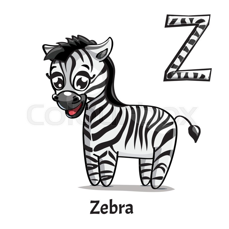 Vector Alphabet Letter Z For Children Education With Funny Cartoon Zebra Isolated Learn To Read Coloring Page
