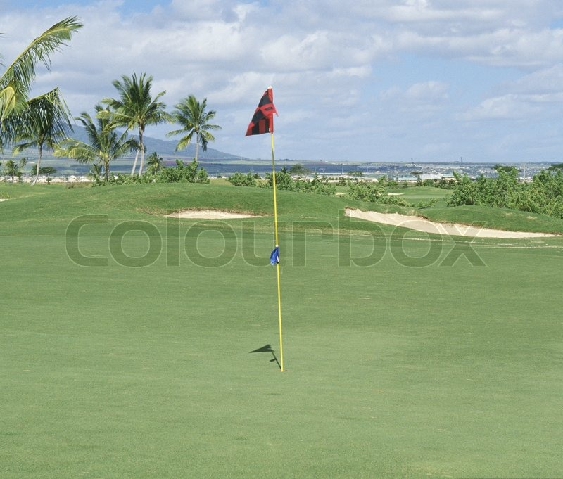 Golf course with flag, stock photo