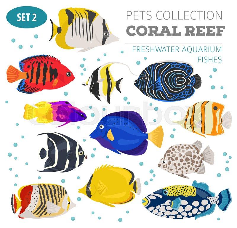 Freshwater Aquarium Fish Breeds Icon Set Flat Style Isolated On