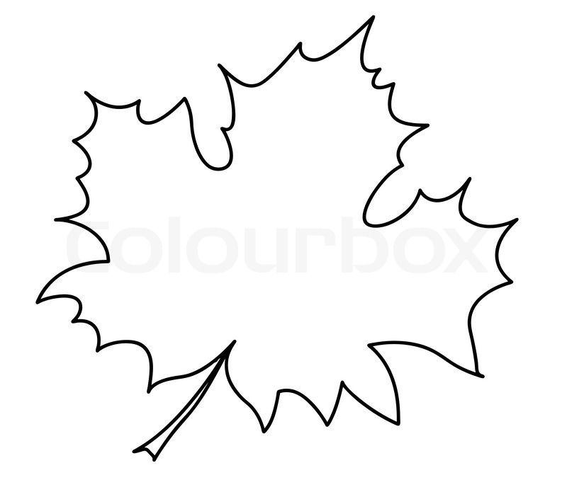 silhouette des ahornblatt auf weißem hintergrund