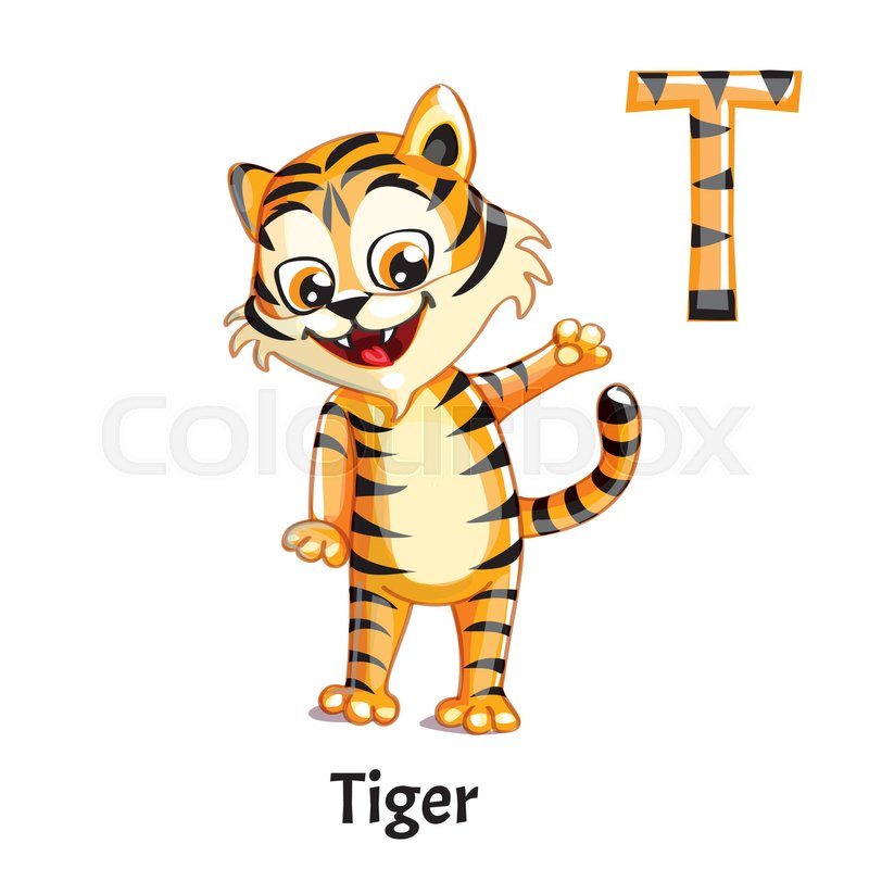 Vector Alphabet Letter T For Children Education With Funny Cartoon Tiger Isolated Learn To Read